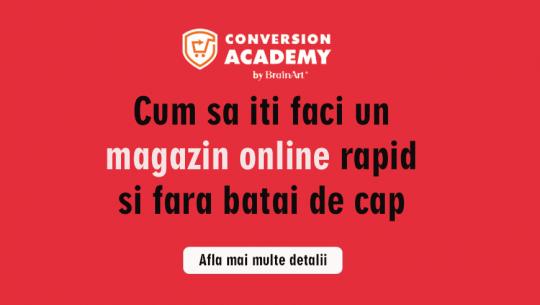 Cum sa iti faci un magazin online rapid si fara batai de cap