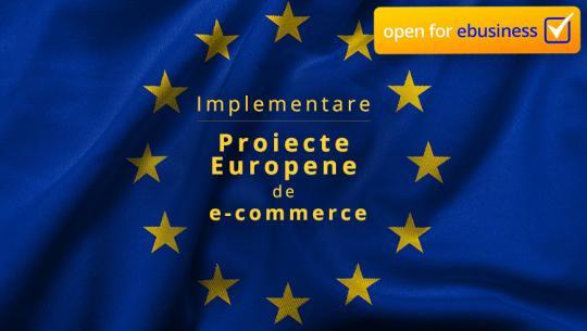 Fonduri europene pentru ebusiness