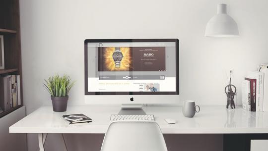20 de branduri, un concept store online | Client: Chronotime